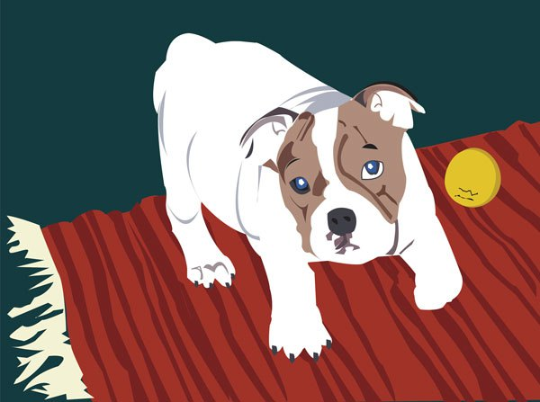 bulldog illustration art vector digital